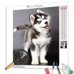 Diamond Painting – Kleiner Husky