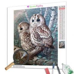 Diamond Painting – Die Habichtskauz
