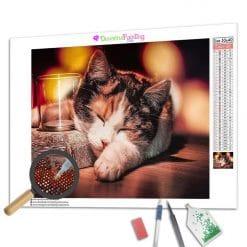 Diamond Painting – Verschlafene Katze